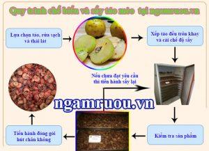 quy trình sấy táo mèo khô sạch