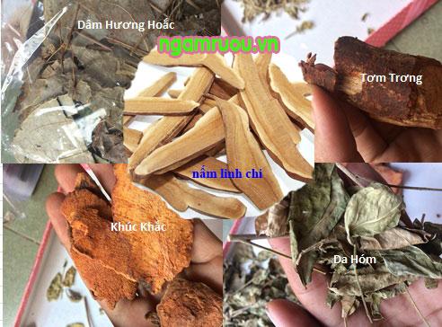thành phần thuốc amakong