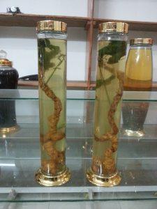 Rượu sâm ngọc Linh -sâm Việt Nam tốt nhất Thế giới