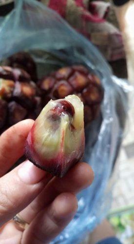 quả na rừng hay quả chí chuôn chua chín ăn rất ngon và thơm