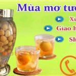 Cách ngâm rượu mơ tươi kiểu Việt Nam đơn giản thơm ngon dễ uống