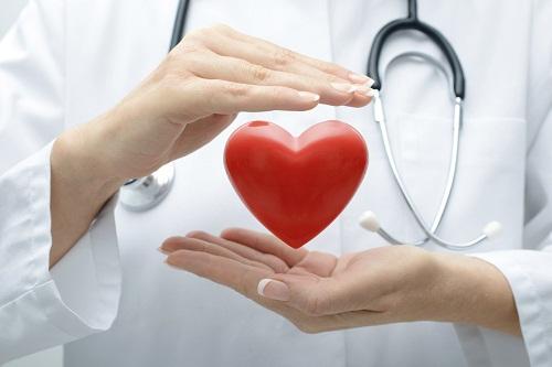 quả mơ giúp cải thiện tình trạng tim mạch