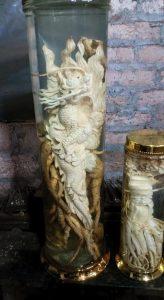 Đinh lăng điêu khắc rồng khủng