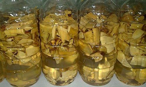 Rượu rễ cây mật gấu