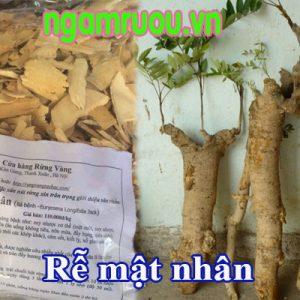 Rễ mật nhân