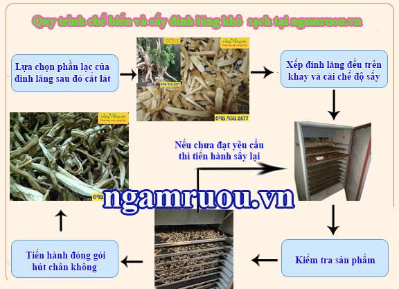 quy trình sấy đinh lăng tươi và khô