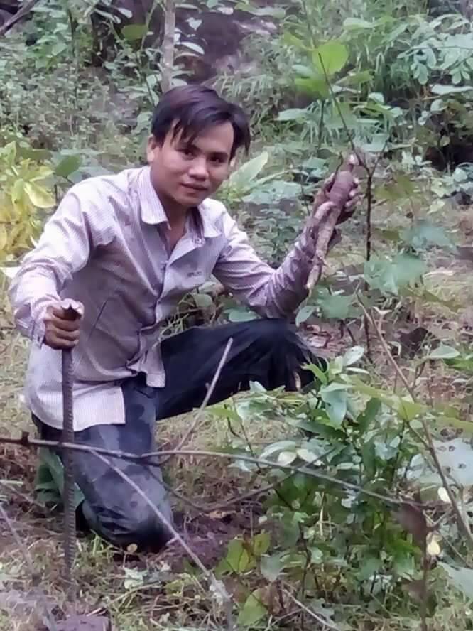 Hình ảnh đi rừng đào sâm bố chính rừng ở Phú Yên - ảnh do anh em đi rừng cung cấp