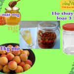 Cách ngâm mơ với mật ong thơm ngon bổ dưỡng dễ làm ngay tại nhà