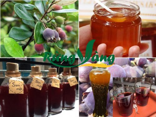 nguyên liệu ngâm rượu sim với mật ong