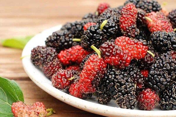 4 loại trái cây giúp giảm béo - Dâu tằm