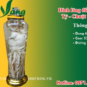 đinh lăng điêu khắc tý - chuột phong thủy 7 lít