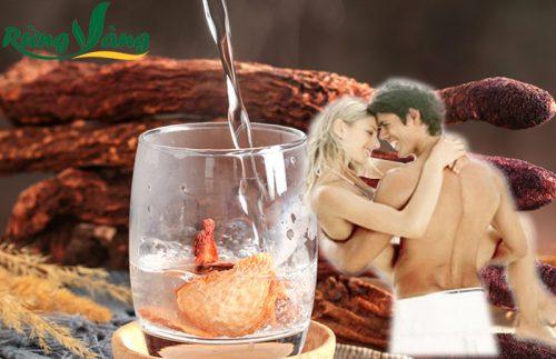 tỏa dương giúp tăng cường sinh lực và bổ thận nam
