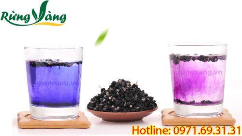 trà kỷ tử đen tác dụng rất tốt cho sức khỏe
