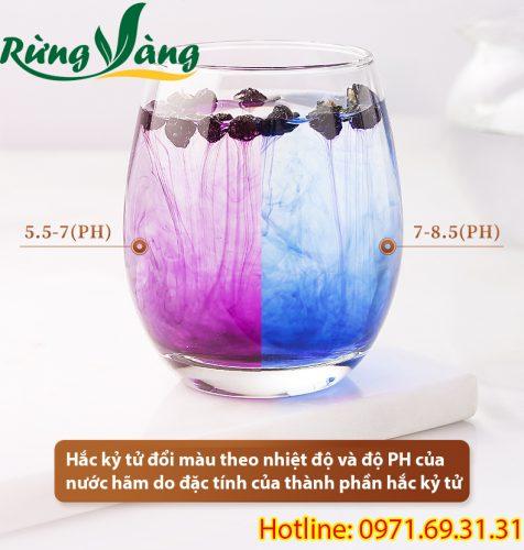 hắc kỷ tử đổi màu theo PH của nước